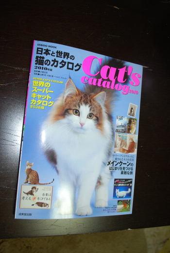 Cat_c1